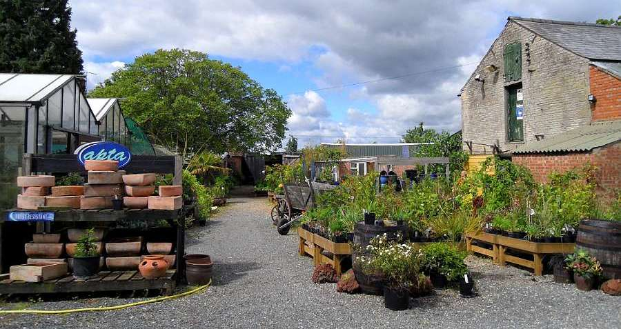 Swines Meadow Farm Nursery